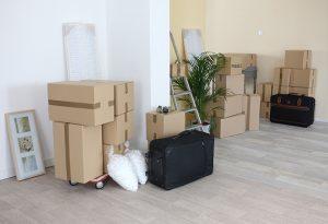 Burleigh Heads Storage Solutions